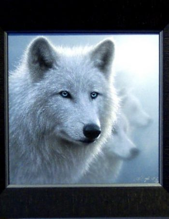 Whiteout by Collin Boggle, giclee canvas framed
