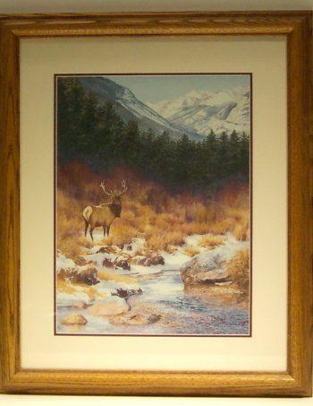 On the Edge of the Stream Bull Elk by Barbara Moore framed